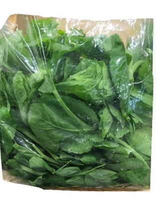 Picture of 豆苗(个)(约重0.9-1.2lbs)